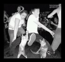 Obligatory picture of dancing cats...and  people dancing like they just don't care!